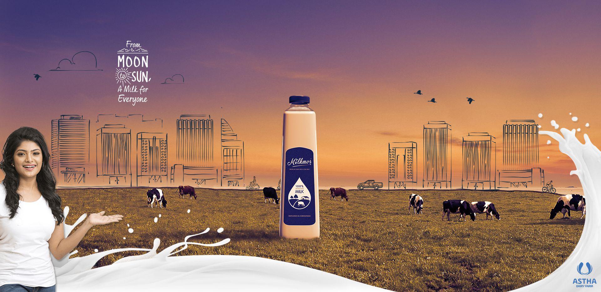 fresh organic milk, cow milk, milkmor